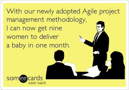agile project management meme